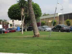 Jardín de las deposiciones