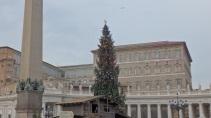 Apartamentos papales