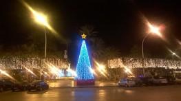 Melilla, árbol 2015