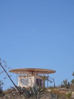 Luna diurna