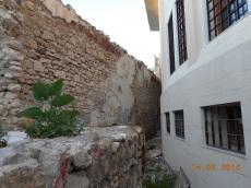 Centro Tecnológico y murallas
