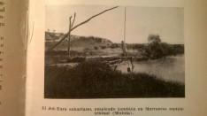 Jot-Tara sahariano