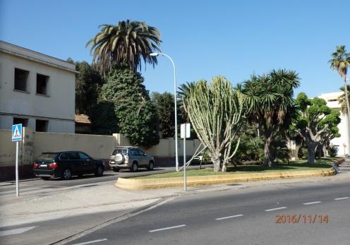Jardín de Astilleros, 2016