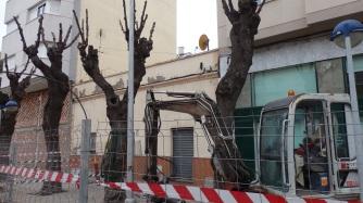 Máquina y árboles