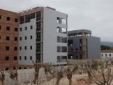 Arboleda desmochada y edificios contiguos
