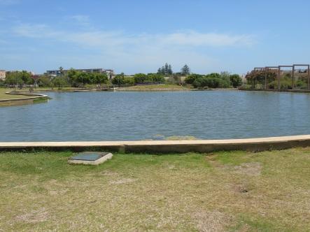 Laguna central del parque