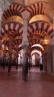 Mezquita de Abderramán I