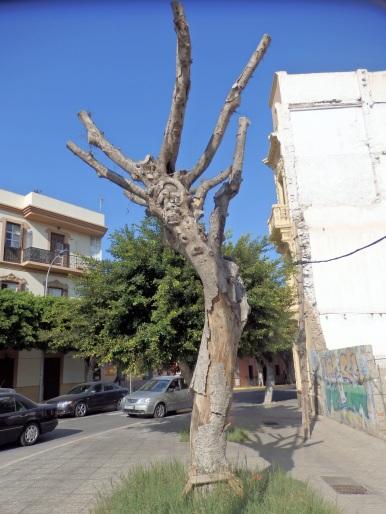 El árbol muerto 5º