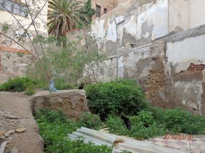 Casa de los Cuatro Patios, cueva o aljibe